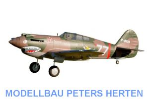 D-Power FMS P-40B Curtiss Warhawk Flying Tiger PNP - 140 cm - Combo incl. Reflex Gyro System - DPFMS081P-REF Abb. 1