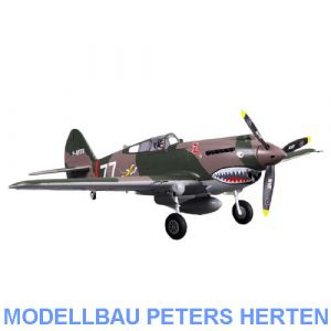D-Power FMS P-40B Curtiss Warhawk Flying Tiger PNP - 98 cm - Combo incl. Reflex Gyro System - DPFMS075P-REF Abb. 1
